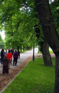 Group walking meditation in Slottsparken