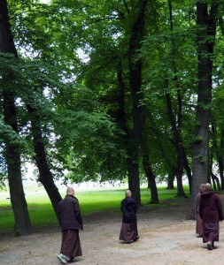 Group of nuns and monks doing walking meditation