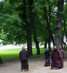 Monks walking mindfully