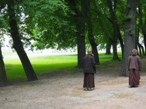 EIAB monks contemplating nature